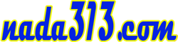 nada 313
