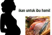 Ikan Yang Bagus Untuk Ibu Hamil