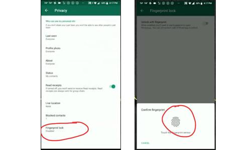 Cara Mengaktifkan Fitur Sidik Jari Whatsapp Android